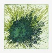 grüneExplosion
